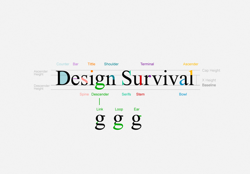 Design Survival - Typography Guide
